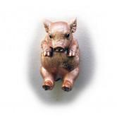 Haken Schwein